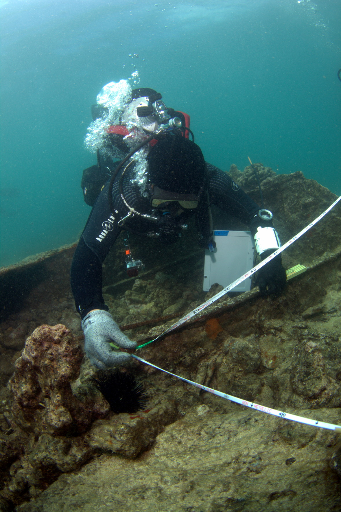 noaa diving program partners with the university of hawai i to teach